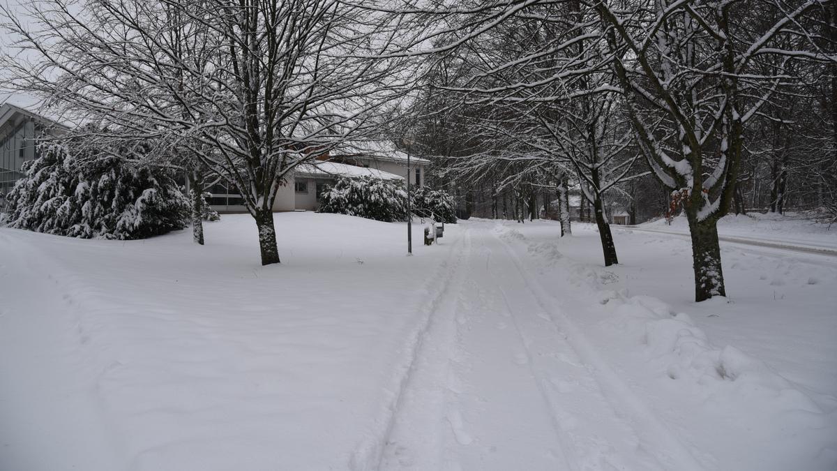 Snötäckt gångbana med snöklädda träd.