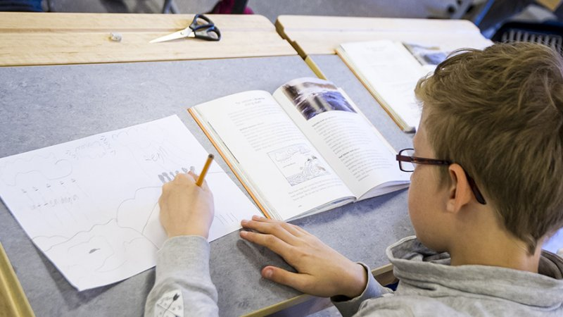 Utbildning och barnomsorg