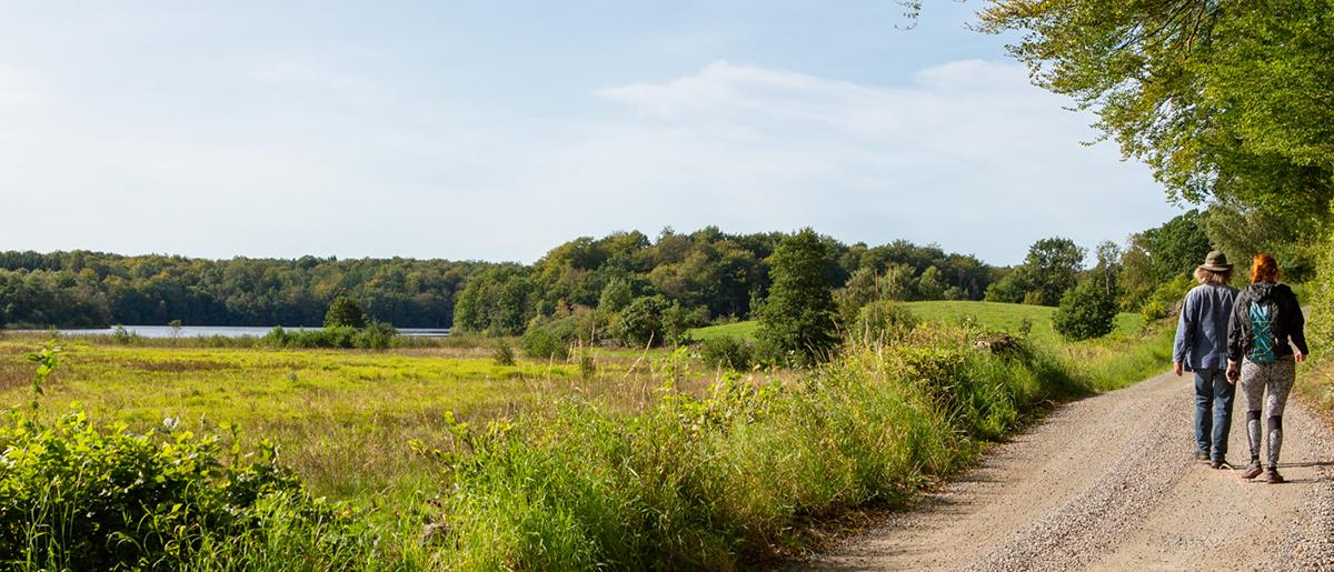 Två personer vandrar på en väg i ett grönskande landskap. I bakgrunden en sjö.