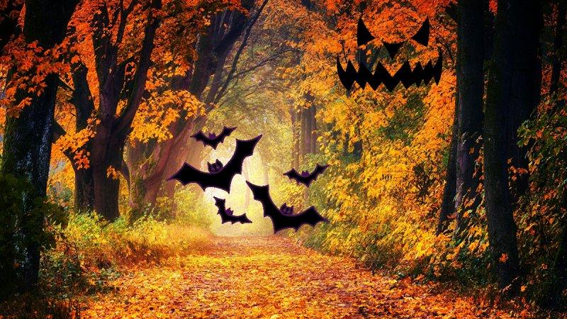 Halloweenkväll på Kulturgården