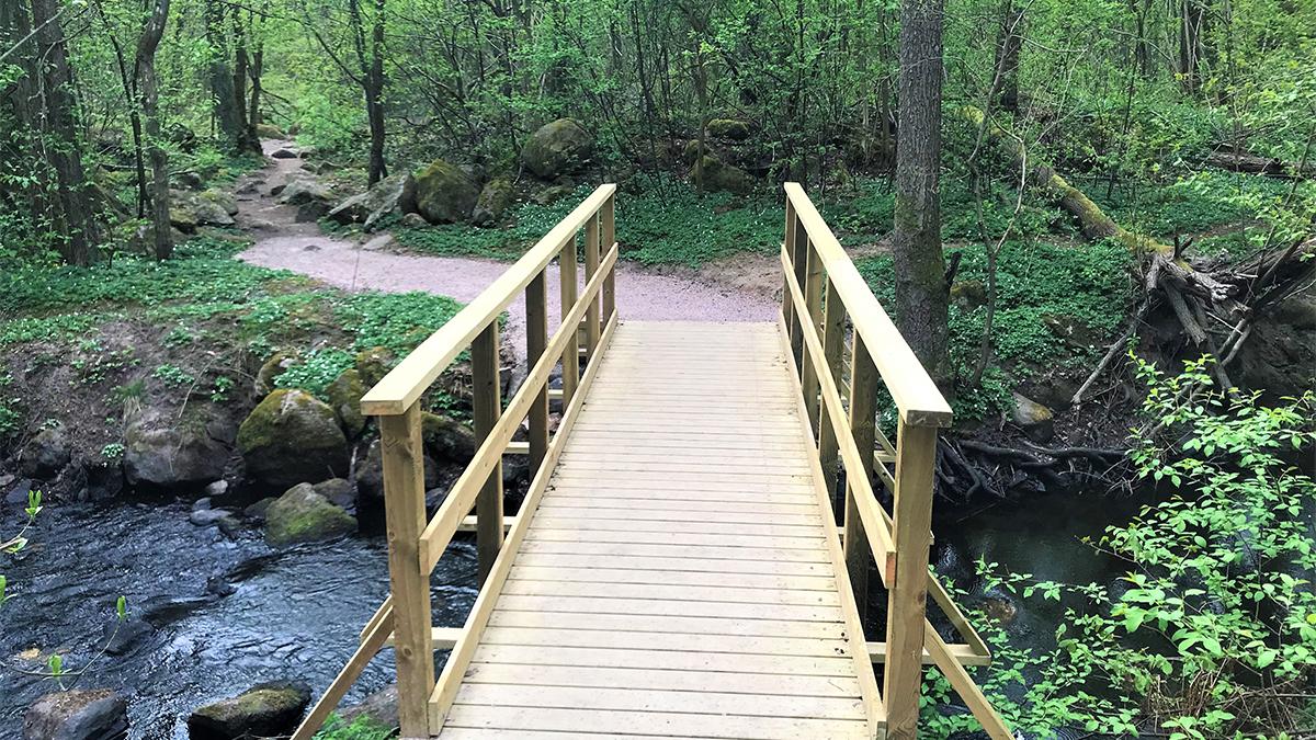 En träbro över en flod ute i skogen.