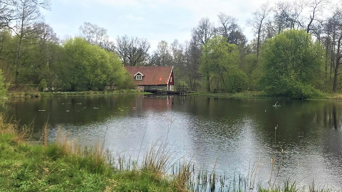 Bild på en stuga vid sjön.