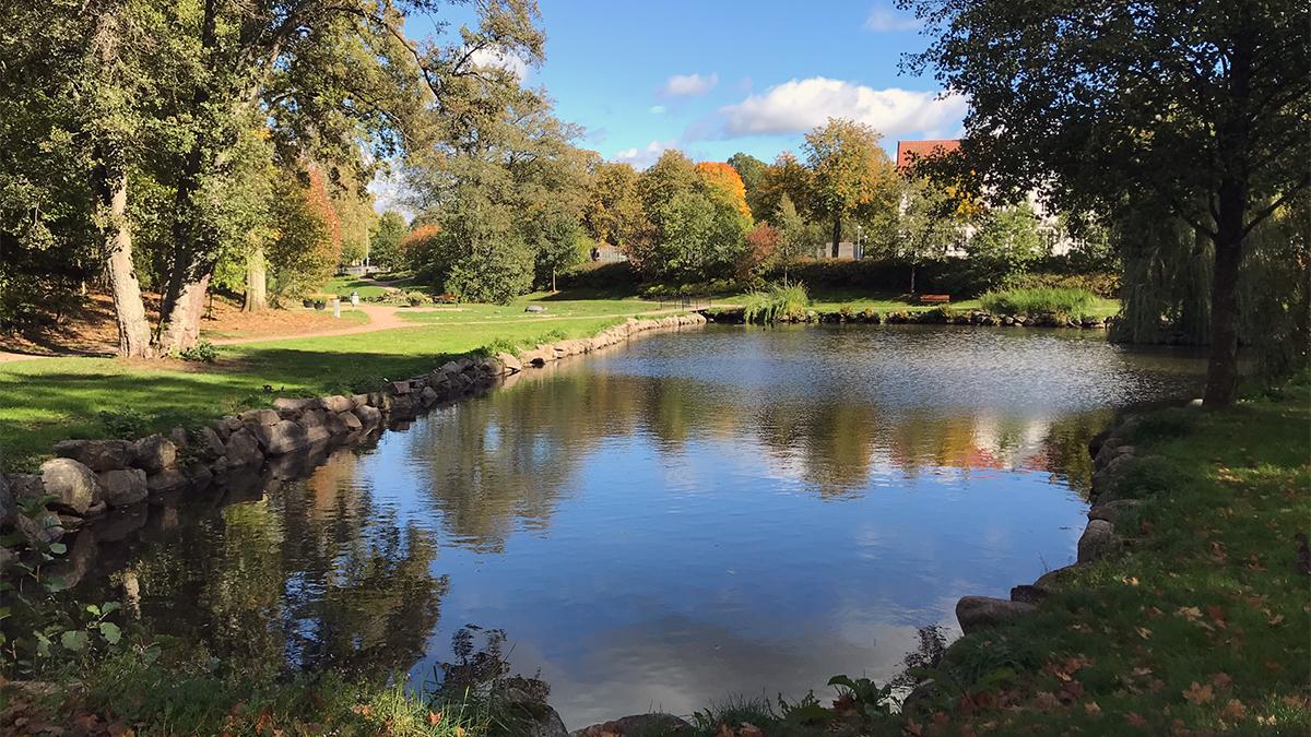 En park med en vattendrag.