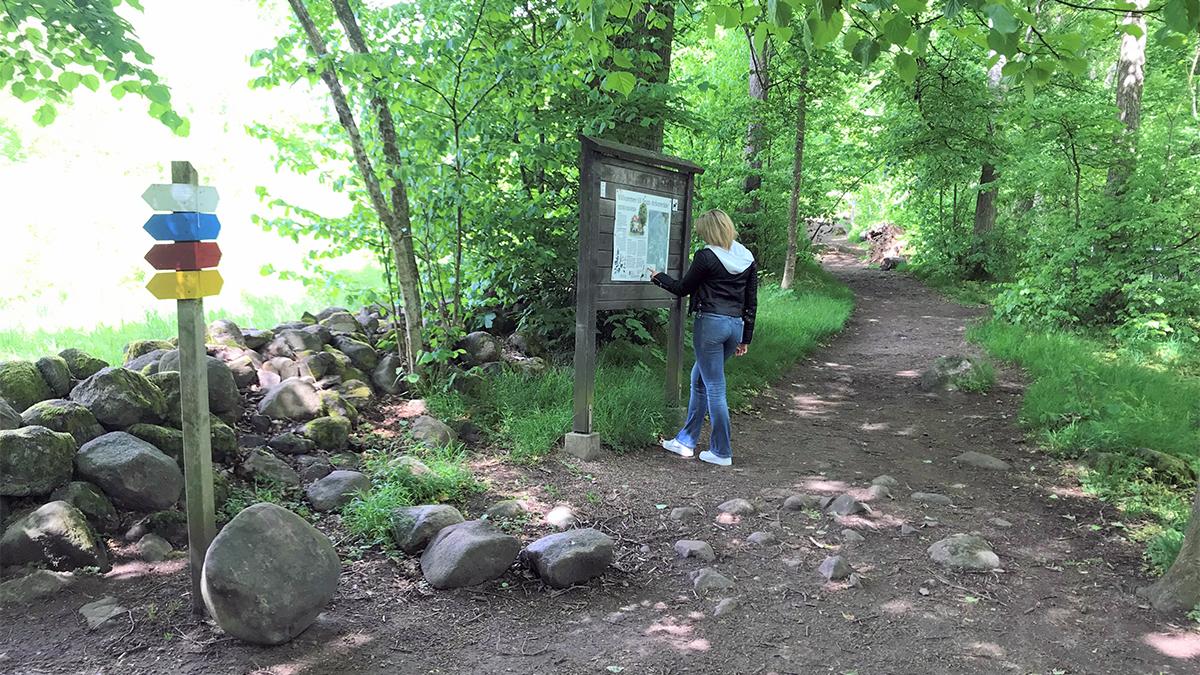 En kvinna ute på en vandringsled. Kvinnan står framför en karta och pekar på den med fingret.