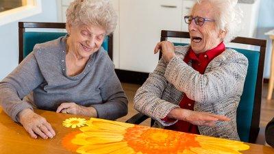 Äldrevård och äldreomsorg